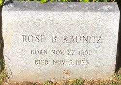 Rose <i>Bengel</i> Kaunitz