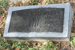 Agnes <i>Adams</i> Wolf