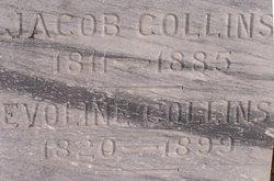 Jacob Collins, Jr