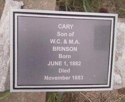 Cary Brinson
