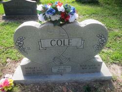 Robert L Cole