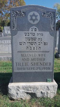 Tillie <i>Shapiro</i> Shender