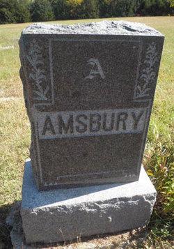 Amy <i>Chinn</i> Amsbury