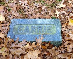 Carrie W Eaton