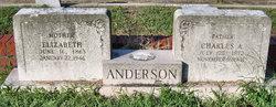 Elizabeth <i>Carlson</i> Anderson