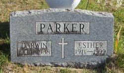 Darwin Amos Parker