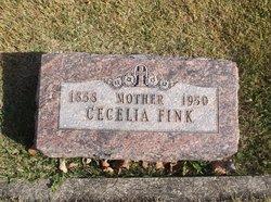 Cecelia <i>Clouse</i> Fink