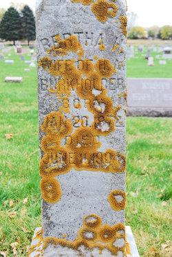 Bertha Hermina <i>Hoyer</i> Burkholder