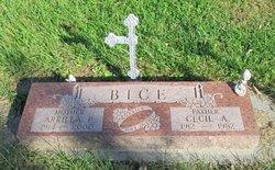 Cecil A. Bice