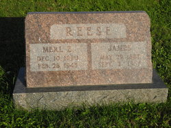James Reese, Jr