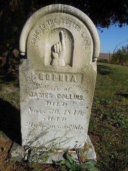 Sophia <i>Allender</i> Collins