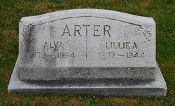 Alva Arter