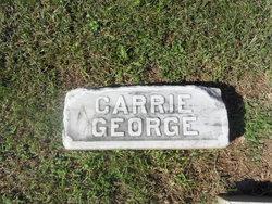 Carrie Lee <i>Cleveland</i> Dunn