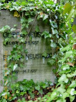 Elwina <i>Wolff</i> Neustadt