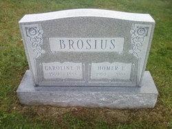 Caroline H <i>Hubner</i> Brosius
