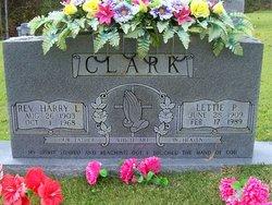Lettie Irene <i>Palmer</i> Clark