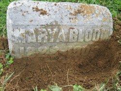 Mary Ann <i>Blair</i> Bloom