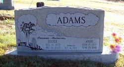 Andy Richard Adams