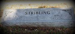 Cornelius Kinchelo Neal Stribling