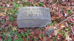 John Llewelyn