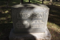William Henry Will Anderson