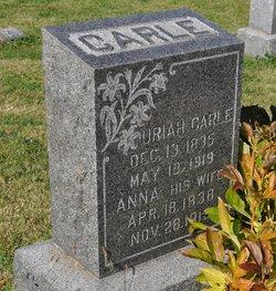 Uriah Carle
