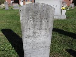 Angelina <i>Hudson</i> Asherbraner
