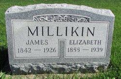Elizabeth <i>Love</i> Millikin