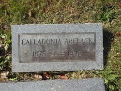 Calladonia <i>Potter</i> Arflack