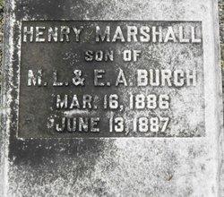 Henry Marshall Burch