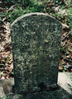 D. M. Crawley