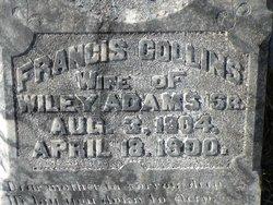 Francis <i>Collins</i> Adams