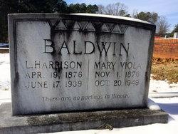 Mary Ann Polly <i>Wallis</i> Baldwin
