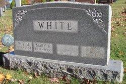 Roy M LeRoy White