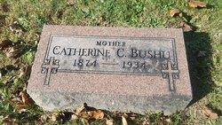 Catherine Cecelia <i>Hayes</i> Bushu