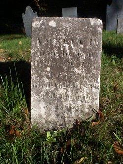 Amelia F Bowen