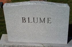 Mike Clifford Blume