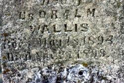 Ima Wallis
