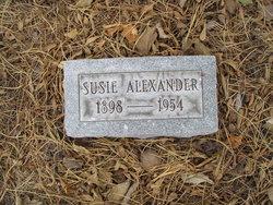Susie <i>Hairston</i> Alexander