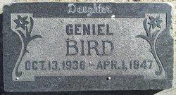 Geniel Bird