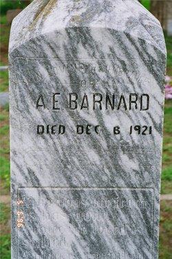 Alfred Eldridge Barnard