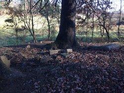 Bunting Cemetery
