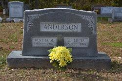 James Louis Toby Anderson