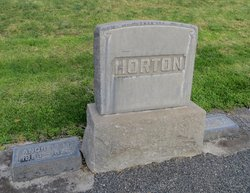Andrew M Horton