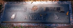 Mary <i>Bryan</i> Andre