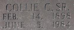 Collie Camp Arrington
