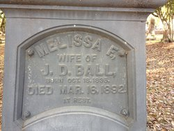 Melissa Flavilla <i>Kendall</i> Ball