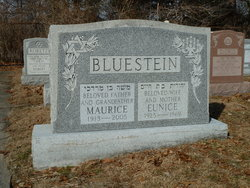 Eunice <i>Brown</i> Bluestein