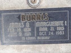 James Otis Burris
