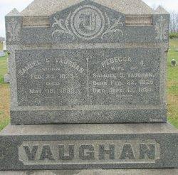Rebecca A Vaughan